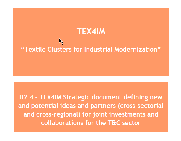 D2.4 – TEX4IM Strategic document defining new and potential ideas and partners (cross-sectorial and cross-regional) for joint investments and collaborations for the T&C sector